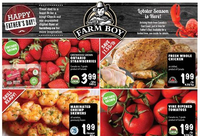 Farm Boy Flyer June 18 to 24