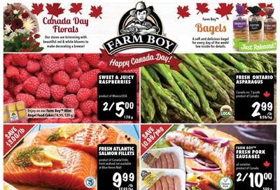 Farm Boy (Cornwall, Kingston and Ottawa) Flyer June 25 to July 1