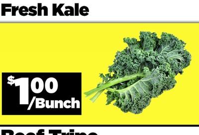 Basha Foods International Flyer July 7 to 10
