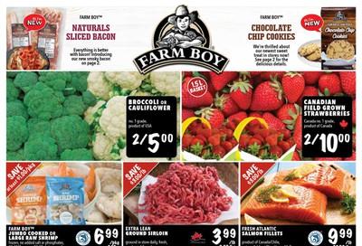 Farm Boy (Cornwall, Kingston and Ottawa) Flyer July 9 to 15