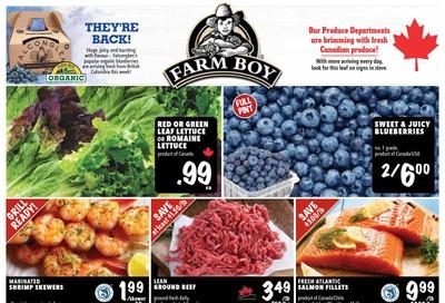 Farm Boy Flyer July 16 to 22