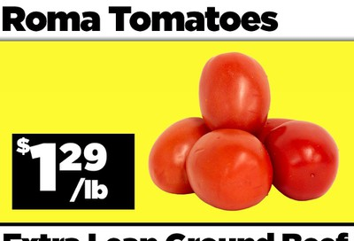 Basha Foods International Flyer August 5 and 6
