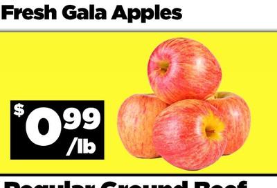 Basha Foods International Flyer September 11 and 12
