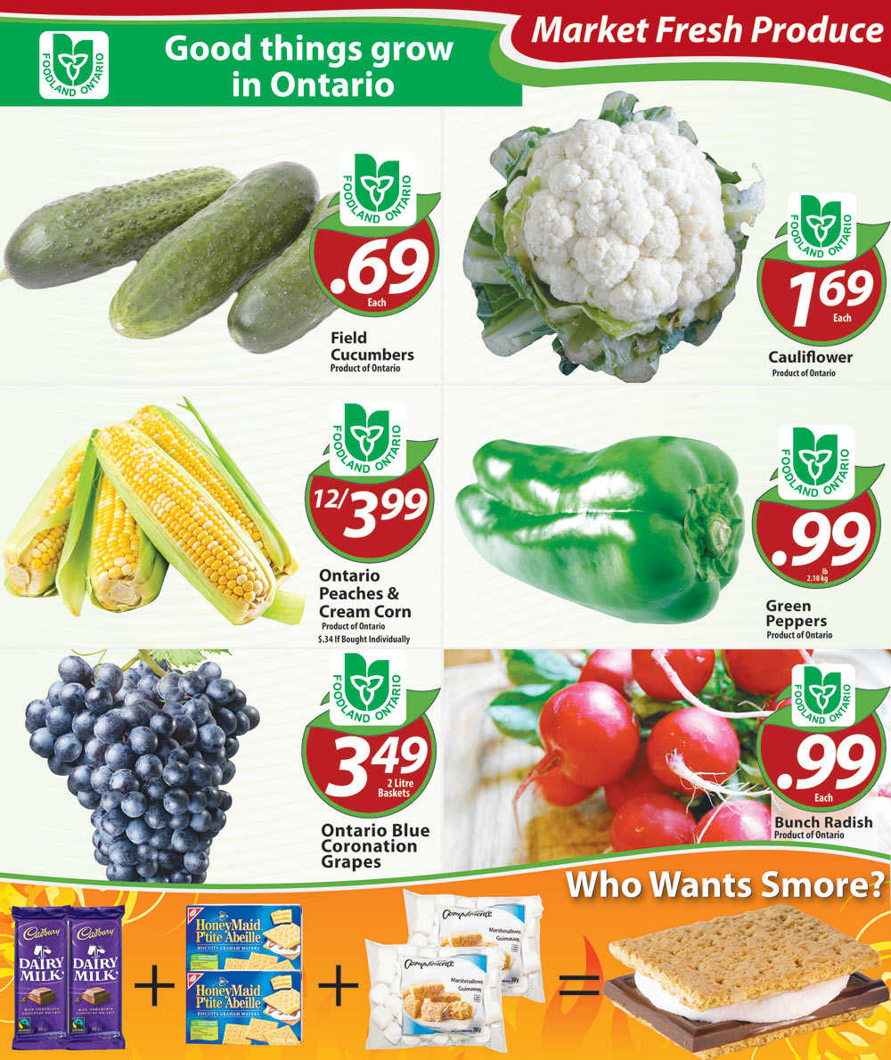 Chesley Grocery Store flyer August 29 to September 4 Canada