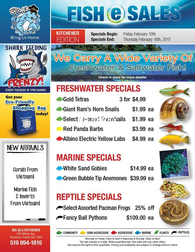 Big Al\'s (Kitchener) Weekly Specials February 10 to 16 Canada