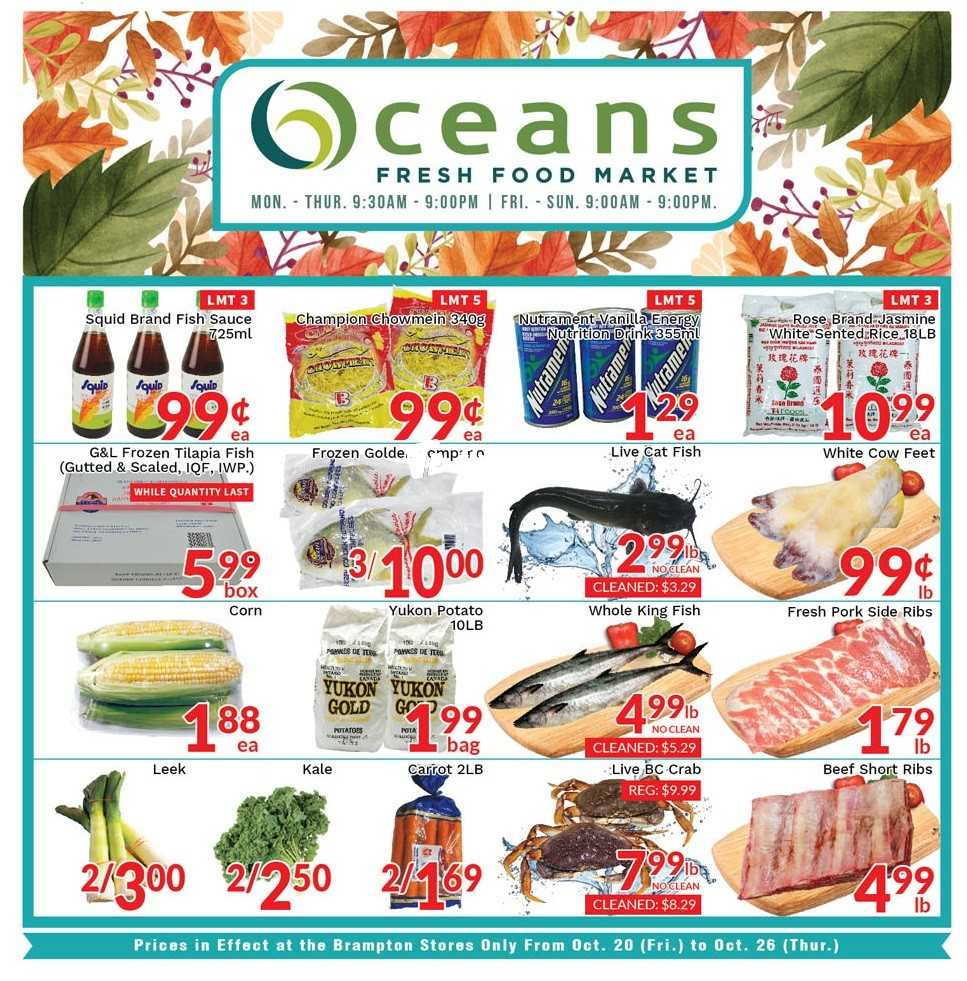 Oceans Chinese Food Brampton