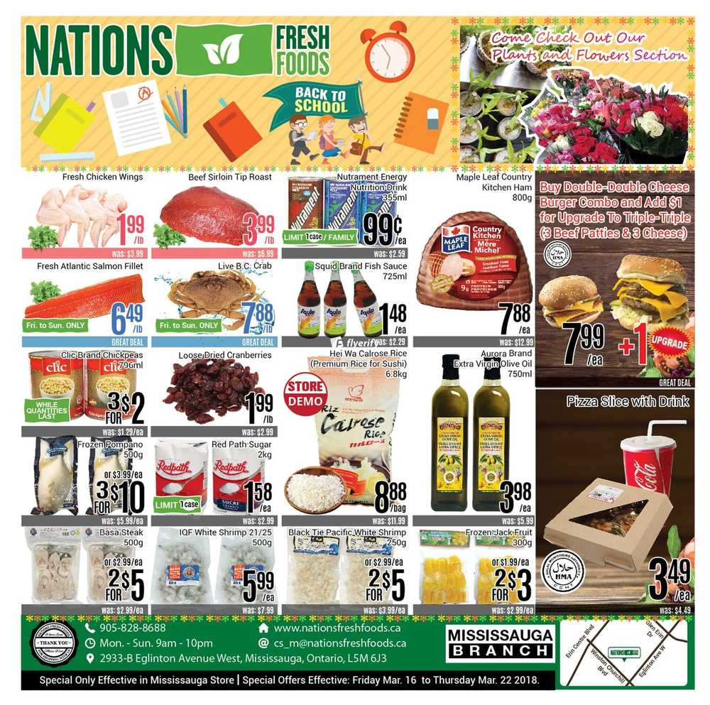 Village Health Foods Mississauga